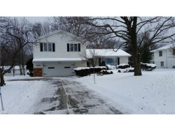 Photo of 945 Colony Dr, Highland Heights, OH 44143 (MLS # 3965252)