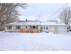 Photo of 337 Fowler St, Cortland, OH 44410 (MLS # 3965292)