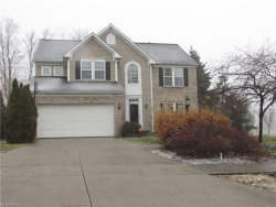 Photo of 10002 Brushwood Dr, Streetsboro, OH 44241 (MLS # 3966277)