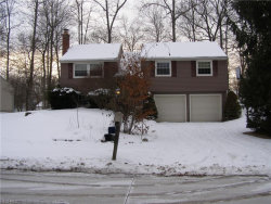 Photo of 4682 Dresher Trl, Stow, OH 44224 (MLS # 3966334)