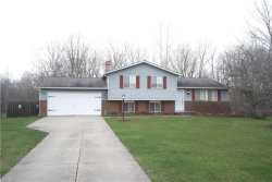 Photo of 8694 Crow Dr, Macedonia, OH 44056 (MLS # 3966723)