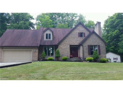 Photo of 11821 Mumford, Garrettsville, OH 44231 (MLS # 3967021)