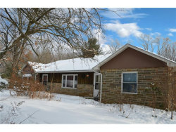Photo of 16721 Savage Rd, Chagrin Falls, OH 44023 (MLS # 3967102)