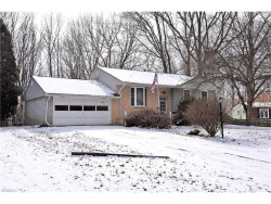 Photo of 7584 Venice Heights Dr Northeast, Warren, OH 44484 (MLS # 3967465)