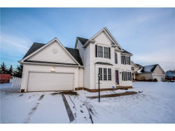 Photo of 3676 Cranberry Hl, Rootstown, OH 44272 (MLS # 3971530)