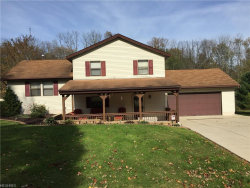 Photo of 8027 State Route 305, Garrettsville, OH 44231 (MLS # 3971815)