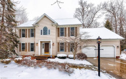 Photo of 10065 Stone Hollow Rd, Mentor, OH 44060 (MLS # 3974898)