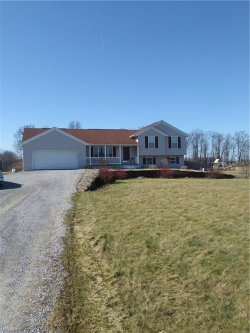 Photo of 9875 Asbury Rd, Mantua, OH 44255 (MLS # 3975015)