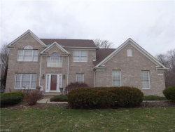 Photo of 10242 Dayflower Dr, Twinsburg, OH 44087 (MLS # 3975967)