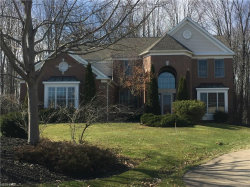 Photo of 3094 Alling Dr, Twinsburg, OH 44087 (MLS # 3976630)