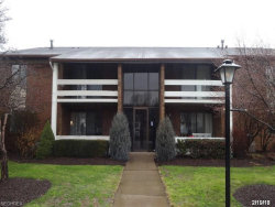 Photo of 1265 Lost Nation Rd, Unit 6, Willoughby, OH 44094 (MLS # 3976768)