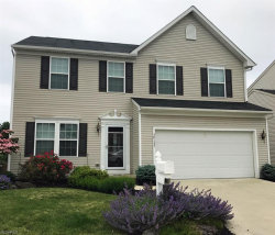 Photo of 38137 North Brooks Dr, Willoughby, OH 44094 (MLS # 3976906)
