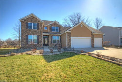 Photo of 31 Woodland Run, Canfield, OH 44406 (MLS # 3977648)