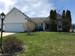 Photo of 10235 Janet Dr, Streetsboro, OH 44241 (MLS # 3977691)