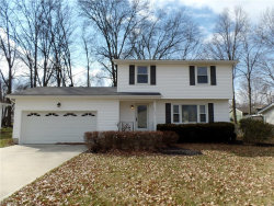 Photo of 3542 Johnson Farm Dr, Canfield, OH 44406 (MLS # 3977914)