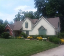 Photo of 7639 Winterberry Dr, Youngstown, OH 44512 (MLS # 3978096)