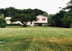 Photo of 6476 Booth Rd, Ravenna, OH 44266 (MLS # 3978438)
