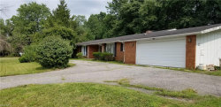 Photo of 7503 Chillicothe Rd, Mentor, OH 44060 (MLS # 3978869)