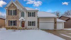 Photo of 6455 Woodhawk Dr, Mayfield Heights, OH 44124 (MLS # 3979222)
