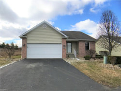 Photo of 125 Fitch Blvd, Unit 256, Youngstown, OH 44515 (MLS # 3979417)