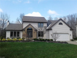 Photo of 10391 Misty Ridge Dr, Concord, OH 44077 (MLS # 3979787)