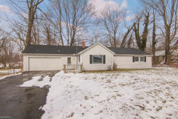 Photo of 4769 State Route 82, Mantua, OH 44255 (MLS # 3980404)