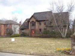 Photo of 7555 Cobblers Run, Poland, OH 44514 (MLS # 3980974)