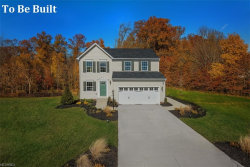 Photo of 3600 Shady Timber Dr, Twinsburg, OH 44087 (MLS # 3981117)