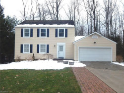 Photo of 1128 Riverview Dr, Macedonia, OH 44056 (MLS # 3981405)
