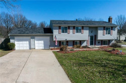 Photo of 4389 Stafford Cir, Stow, OH 44224 (MLS # 3981548)