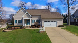 Photo of 309 Deer Creek Dr, Struthers, OH 44471 (MLS # 3981711)