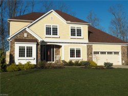 Photo of 11126 Potters Trl, Concord, OH 44077 (MLS # 3982114)