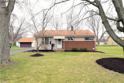 Photo of 354 North Mecca St, Cortland, OH 44410 (MLS # 3983849)