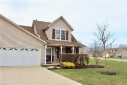 Photo of 21 Tanners Farm Dr, Painesville Township, OH 44077 (MLS # 3985180)
