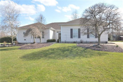 Photo of 8630 Fairweather Trl, Poland, OH 44514 (MLS # 3986819)