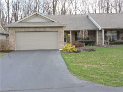 Photo of 6695 Clingan Rd, Unit 19, Poland, OH 44514 (MLS # 3988264)
