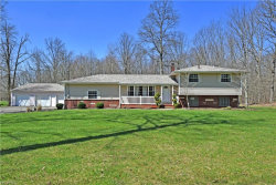 Photo of 1943 Braceville Robinson Rd, Southington, OH 44470 (MLS # 3994144)
