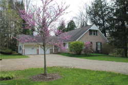 Photo of 10922 Ambler Ln, Mantua, OH 44255 (MLS # 3995846)