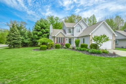 Photo of 5429 Heather Hill Dr, Mentor, OH 44060 (MLS # 3998487)