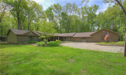 Photo of 8883 Perkins Dr, Mentor, OH 44060 (MLS # 4000165)