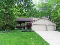 Photo of 8920 Doral Dr, Mentor, OH 44060 (MLS # 4000738)