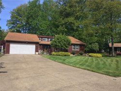 Photo of 9187 Thomas Ct, Mentor, OH 44060 (MLS # 4000756)