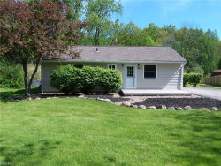 Photo of 10337 Prouty Rd, Concord, OH 44077 (MLS # 4001058)