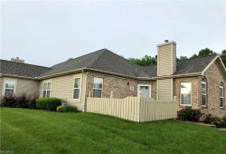 Photo of 695 East Western Reserve Rd, Unit 2101, Poland, OH 44514 (MLS # 4004662)