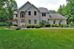 Photo of 2430 Red Oak Ct, Brimfield, OH 44266 (MLS # 4006949)