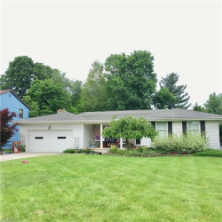 Photo of 1300 Meadow Ln, Poland, OH 44514 (MLS # 4007892)