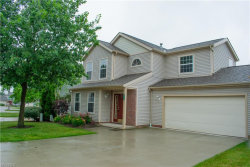 Photo of 8696 Kingfisher Ln, Macedonia, OH 44056 (MLS # 4009135)
