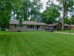 Photo of 16 Gillian Ln, Youngstown, OH 44511 (MLS # 4009540)