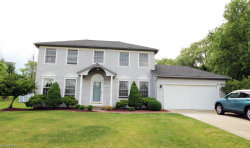 Photo of 1072 Sharonbrook Dr, Twinsburg, OH 44087 (MLS # 4009650)