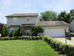 Photo of 3017 Louise Rita Ct, Youngstown, OH 44511 (MLS # 4009724)
